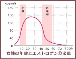 エストロゲン分泌量